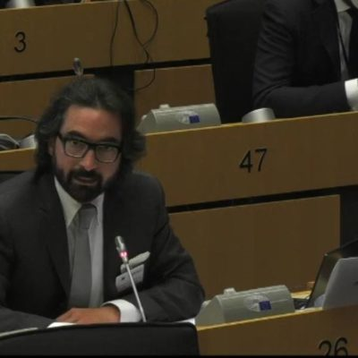 ACT speaks at the INGE Hearing on the European Democracy Action Plan and Digital Services Act and other EU instruments